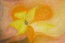 Blume des Lebens 1